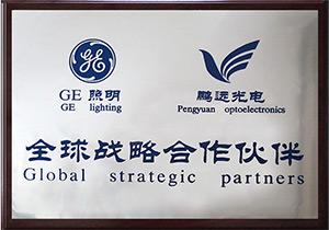 GE照明全球战略合作伙伴